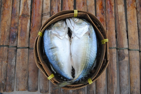A pair of mackerel fish sell in the food market  photo