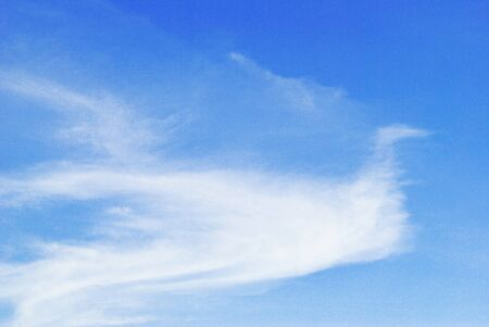The bird cloud shape is on the blue sky photo