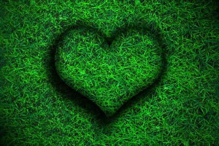 The heart created by a closeup of grass photo