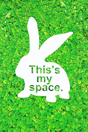lapin silhouette: The white rabbit shape space with green grass Banque d'images