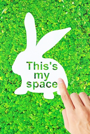 lapin silhouette: The white rabbit shape space with green grass and hand