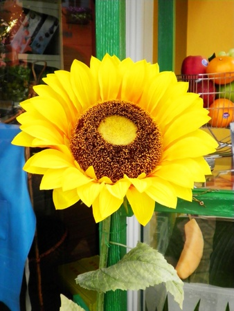Artificial sun flower is in the big pot Stock Photo - 10493402