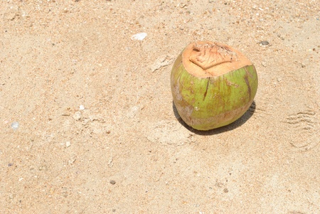 Coconut beverage is on beautiful sand land photo