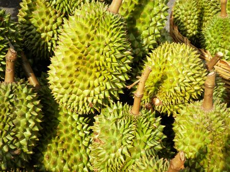 Thai big green durian are in the market         photo