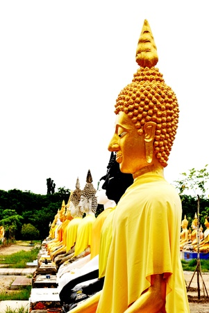 The gold buddha statue arrange in form of roll Stock Photo - 14397395