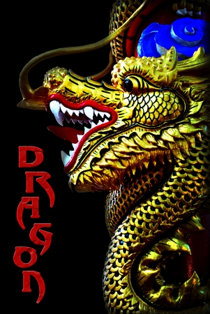 baclground: Chinese style dragon statue in black baclground