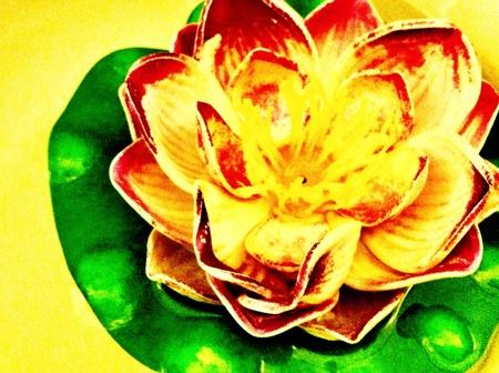 lotus leaf: Painting lotus leaf Stock Photo
