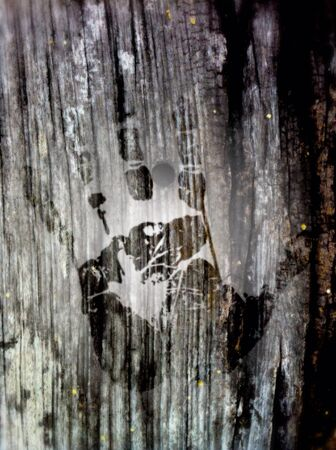 print: Hand print wood log  Stock Photo