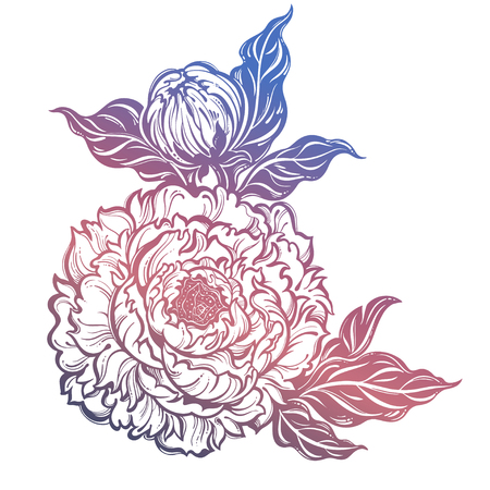 Peony flower with leaves and buds. Nature floral line art. Botany and garden summer tattoo. Vector hand drawn isolated illustration. Stock Illustratie