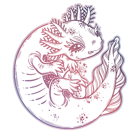 Axolotl salamander amphibian animal in cute linear style. Vector isolated illustration. Stock Vector - 112177519