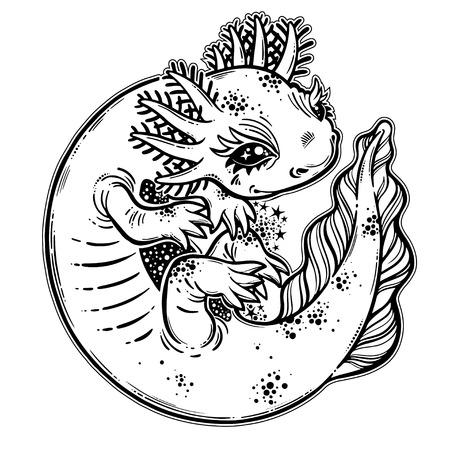 Axolotl salamander amphibian animal in cute linear style. Vector isolated illustration. Stock Vector - 111560901