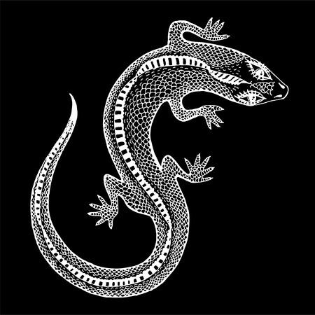 Silueta dibujada a mano de un lagarto mágico salvaje exótico detallado en una corona. Reptil animal para impresión y tatuaje. Arte aislado de la naturaleza del vector. Ilustración de vector