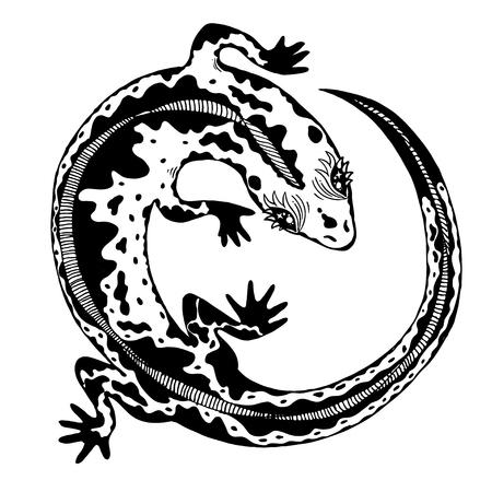Silhouette dessinée à la main d'un lézard sauvage exotique détaillé. Reptile animal pour impression et tatouage. Art de la nature vecteur isolé.