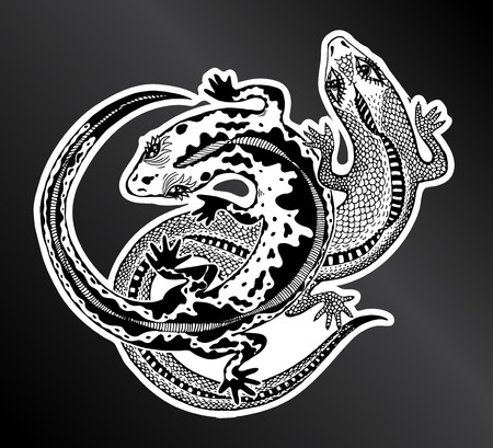 Hand drawn couple of detailed exotic wild lizards. Animal reptile for print and tattoo. Isolated vector nature art.