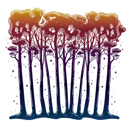 Forest of tall trees silhouette. Hand drawn botanical tree isolated vector. Outdoors tattoo art, wanderlust and nature.