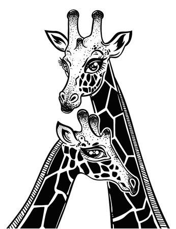 Two Giraffes portrait as a pair of partners in love, spotted long neck African animal couple. Isolated vector illustration. Nature art, friendship tattoo, relationship romantic print, t-shirt design. Иллюстрация