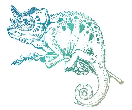 Lézard caméléon sur une branche d'arbre. Croquis dessiné à la main d'un reptile tropical. Illustration vectorielle isolée. Emblème de T-shirt, tatouage dans le style doodle. Illustration vectorielle isolée.