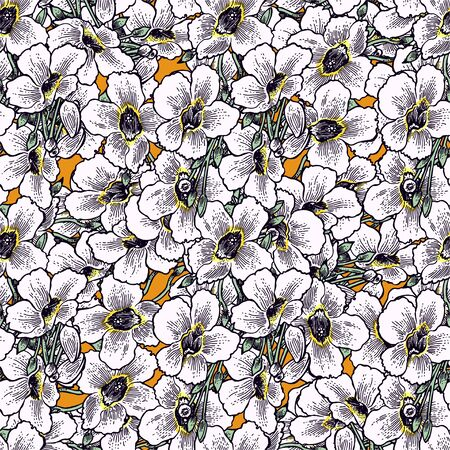 Flower of Morning Glory daisy or Bindweed seamless pattern. Vine plant in full bloom texture. Imagens