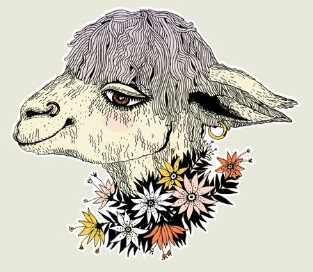 Hand drawn cute lama alpaca wearing wreath of field flowers. Colorful sketch of a tropical animal. Vector isolated illustration. T-shirt emblem, tattoo in doodle style.