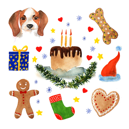 The poster of watercolor portrait Beagle, Bone, Cake, Spruce branches and Cake, stars, heart, snowflakes. Symbol  Chinese New Year. Stock Illustration.