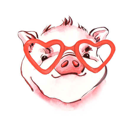 Pig watercolor illustration of hand-painted. Symbol of New Year 2019. Portrait of farm animals facet. Drawn sketch isolated on white background. Фото со стока