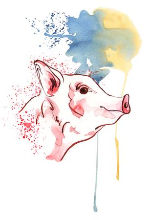 Cute pig in watercolour spots. New year 2019 banner. Symbol zodiac sign. Portrait of farm animals profile. Watercolor piglet illustration. Фото со стока