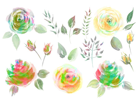 Collection Watercolor Roses. Set Red and Yellow Roses, green foliage. Art has drawn design flower vintage illustration.