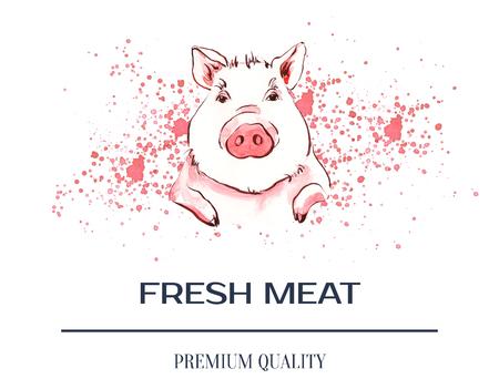 Pig on aquarele spots.  Poster farm animals watercolor. Stockfoto