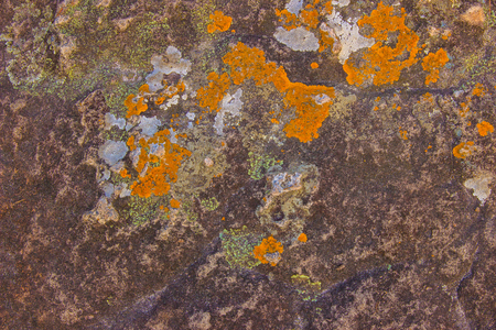 Beautiful patterns and colors on the rocks from natural corrosion texture background. Green moss on stone in the rain forest. Фото со стока