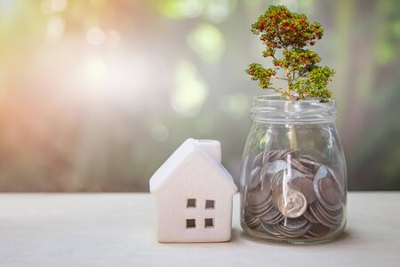 Property or real estate investment. Home mortgage loan rate. Reflection of tree plant growing out of coins in glass jar and house model on table. Financial concept saving money for future retirement. Stockfoto
