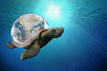 The sea turtle swims in the Pacific ocean environment. World Ocean's day, World Turtle Day, May 23. Suitable for banner, poster, greeting card, shirt, template and print advertising for copy space.