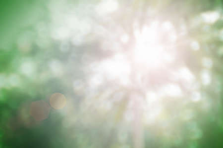 Natural spring blurred green leaves background. Create light soft colors and bright sunshine a short time before sunset tree in forest tropical. Banque d'images