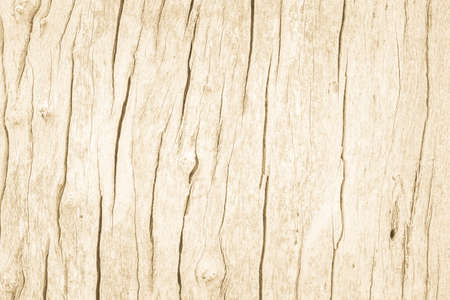 Nature brown wood texture background board seamless wall and old panel wood grain wallpaper. Wooden pattern natural rustic resource design. Summer light teak & pine surface. Table plywood with decor. Banque d'images