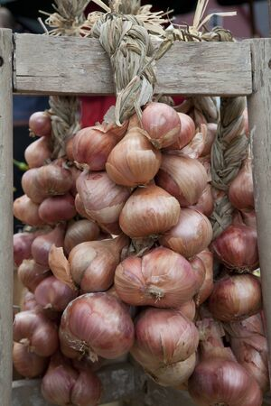 Onion braids on display for sale at farmers market. Vertical shot. photo
