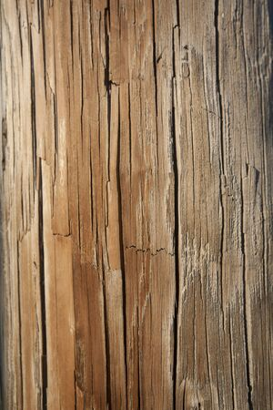 worn: Closeup of the weathered surface on a wooden telephone pole. Vertical shot. Stock Photo