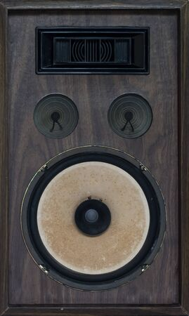 acoustic systems: classic loudspeaker