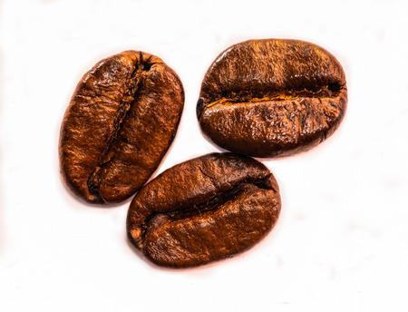 frijoles: Granos de caf� fondo blanco aislado