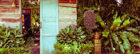 unruffled: wood door in the garden, vintage toning Stock Photo