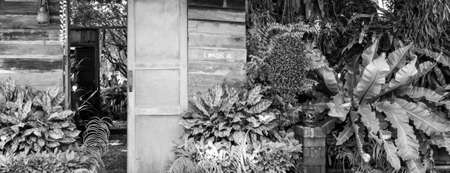 unruffled: wood door in the garden on black and white Stock Photo