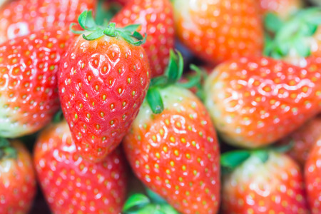 lambent: close up of group of fresh red strawberry