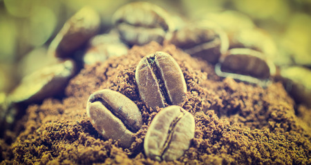 gluttonous: Coffee Beans  texture  on the wood background,selective focus,vintage toning