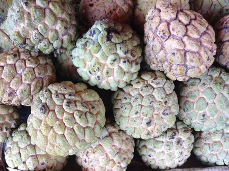 custard apple: Custard apple Stock Photo