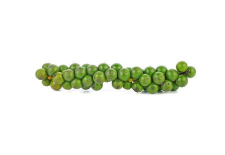 Green peppercorns on white Standard-Bild - 163359732