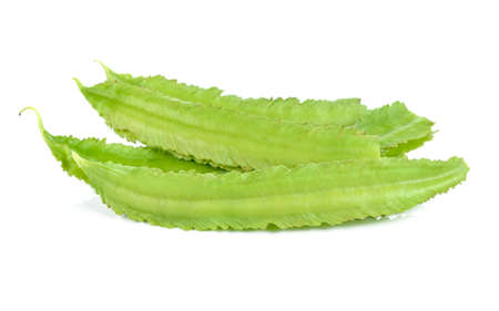winged bean on white background