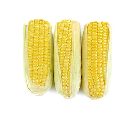 corn isolated on white background 免版税图像