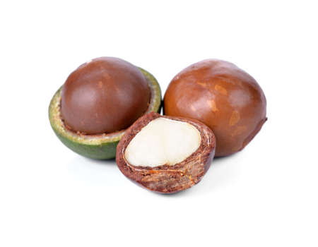 Macadamia nut on white background 免版税图像