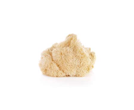 Hericium erinaceus mushroom (monkey head mushroom, bearded tooth fungus, bearded hedgehog mushroom, pom pom, lion's mane mushroom) Standard-Bild