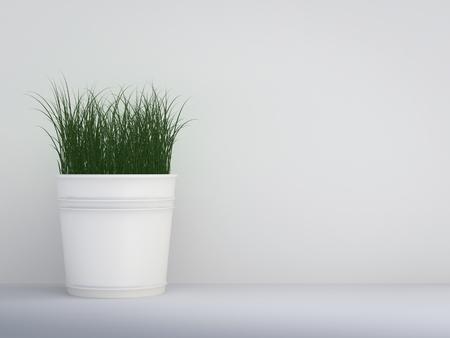 3d rendering green grass in pot plant
