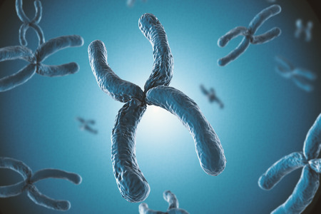 chromosome x y: 3d rendering blue chromosome on blue background