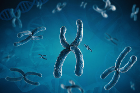 chromosome x y: 3d rendering blue chromosome on blue background